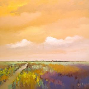 Colorful Farmland by Hans Paus