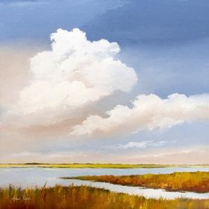 Majestic Clouds by Hans Paus
