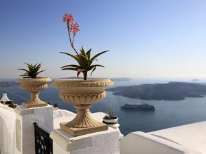 Firostefani, Santorini, Cyclades Islands, Greek Islands, Greece, Europe by Hans Peter Merten