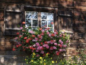 House in Gerstruben Near Oberstdorf, Allgau, Bavaria, Germany, Europe by Hans Peter Merten