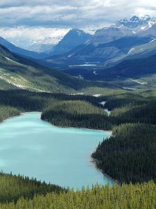 Peyto Lake, Banff National Park, UNESCO World Heritage Site, Alberta, Rocky Mountains, Canada, Nort by Hans Peter Merten