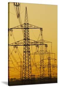 Power lines in morning light, Germany, Europe by Hans-Peter Merten