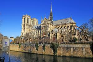 Seine River with Notre Dame Cathedral, UNESCO World Heritage Site, Paris, Ile de France, France, Eu by Hans-Peter Merten