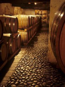 Barrique Cellar in Abbazia Di Rosazzo, Collio, Friuli by Hans-peter Siffert