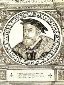 Carolus V by Hans Rudolf Manuel Deutsch