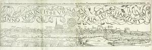 Town View of Vienna in 1548, 1550 by Hans Rudolf Manuel Deutsch
