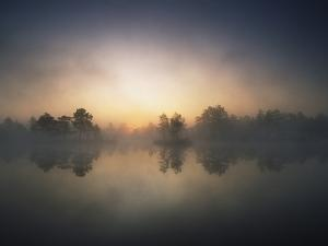 Morning Mist and Sunrise along Wetlands by Hans Strand