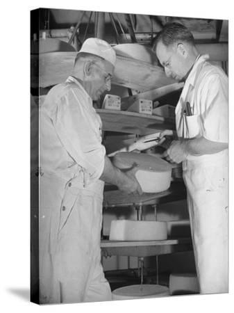 Factory Workers Testing the Newly Manufacture Cheese