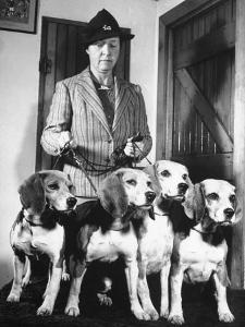 Mrs. William Dupont Jr. Holding Reins of Four Beagles That Belonged to Her Late Husband by Hansel Mieth