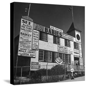 View of a Souvenir Store that Specializes in the Dionne Quintuplets Merchandise by Hansel Mieth
