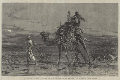 Happiness in the Desert-Carl Haag-Giclee Print
