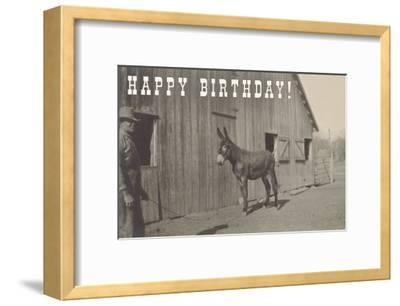 Happy Birthday, Mule and Man