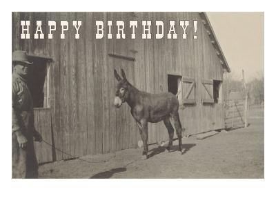Happy Birthday, Mule and Man--Art Print