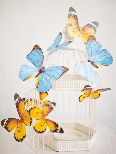 Happy Daydream 2-Susannah Tucker-Premium Giclee Print