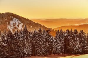 Germany, Thuringia, Gehlberg, Schm?cke, Mountain Silhouettes, Spruces, Snow, Back Light by Harald Schšn