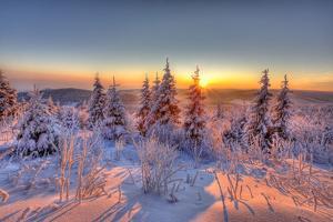 Germany, Thuringia, Mountain Kickelhahn, Ilmenau, Winter Forest, Sunrise by Harald Schšn