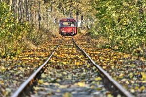 Railroad Line, Motor Coach Recedes into the Distance, Track, Fall Foliage, Trees by Harald Schšn