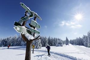 Signpost, Snow, Cross-Country Skier, Sun, Forest by Harald Schšn