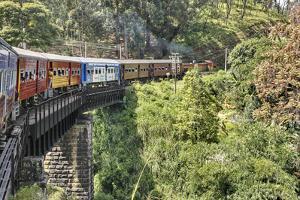 Sri Lanka, Train, Bridge by Harald Schšn