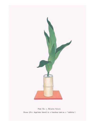 Haran (Five Aspidistra Leaves) In Bamboo Vase-Josiah Conder-Art Print