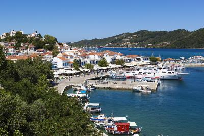 Harbour, Skiathos Town, Skiathos Island, Sporades Islands, Greek Islands, Greece, Europe-Stuart Black-Photographic Print