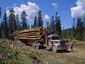 Logging Truck, British Columbia, Canada, North America by Harding Robert