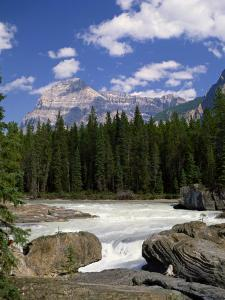 Rocks and Trees Beside a River with the Rocky Mountains in the Background, British Columbia, Canada by Harding Robert
