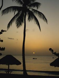 Turtle Beach, Tobago, West Indies, Caribbean, Central America by Harding Robert
