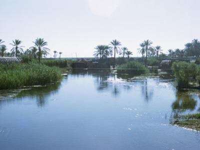 Village of the Marsh Arabs, Taken in the 1970S, Iraq, Middle East by Harding Robert