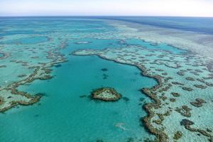 Hardy Reef, Great Barrier Reef, Australia, Aerial Photograph
