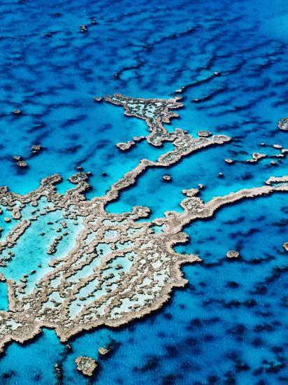 Hardy Reef, Near Whitsunday Islands, Great Barrier Reef, Queensland, Australia-Holger Leue-Photographic Print