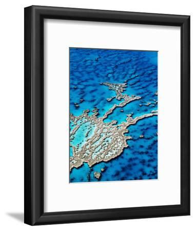 Hardy Reef, Near Whitsunday Islands, Great Barrier Reef, Queensland, Australia-Holger Leue-Framed Photographic Print