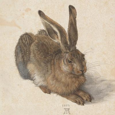 https://imgc.artprintimages.com/img/print/hare-1502_u-l-ptqvm40.jpg?p=0