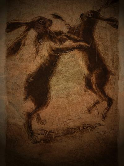 Hare Boxing-Tim Kahane-Photographic Print