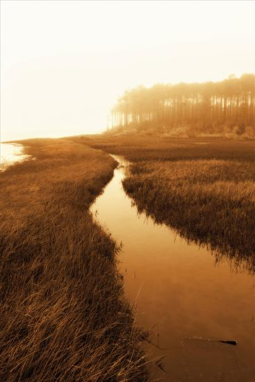 Harker's Island Marsh I-Alan Hausenflock-Photographic Print