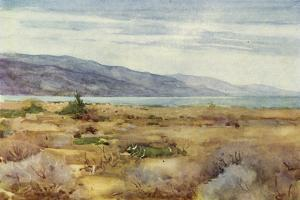 Dead Sea in the Holy Land c1910 by Harold Copping