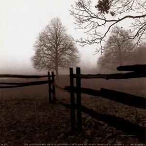 Fence in the Mist by Harold Silverman