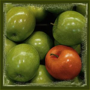 One Red Apple by Harold Silverman
