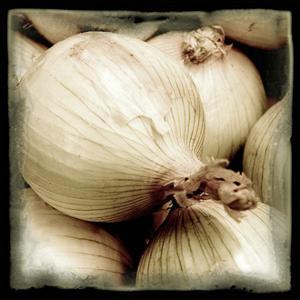 Onion Field by Harold Silverman