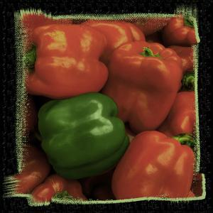 Red Peppers by Harold Silverman