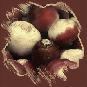 Turnips by Harold Silverman