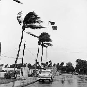 Hurricanes 1960 by Harold Valentine