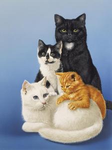 Cat Family by Harro Maass