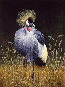 Crowned Crane by Harro Maass