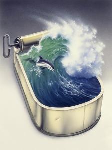Dolphin in Wave by Harro Maass