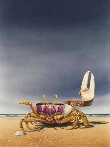 Fiddler Crab by Harro Maass