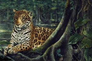 Jaguar by the River by Harro Maass