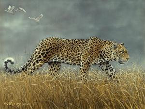 Leopard 2 by Harro Maass