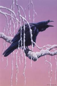 Raven by Harro Maass