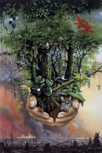 Save the Rainforest by Harro Maass